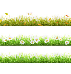Grass in different seasons set vector