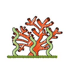 Marine coral sealife icon vector