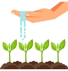 Watering plants from hand image vector
