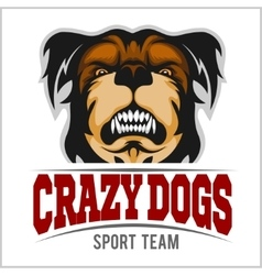Modern professional logo for sport team bulldog vector