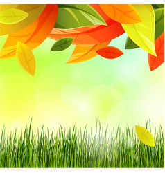autumn background with color leaves and grass vector image