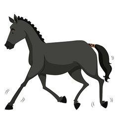 Black horse running alone vector