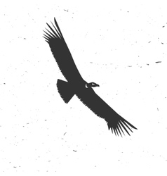 Flying condor silhouette on the white background vector