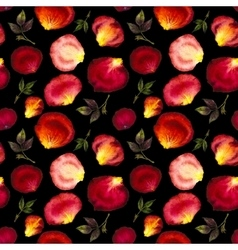 Watercolor seamless pattern of pink and red petals vector image