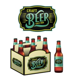 6 pack of craft beer and bottle vector
