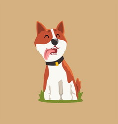 Colorful welsh corgi on green lawn adorable puppy vector