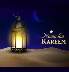 Lantern stands in the desert at night sky vector