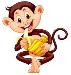 Little monkey eating banana vector image