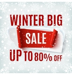 Winter big Sale abstract banner vector image vector image