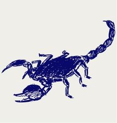 Emperor Scorpion vector image
