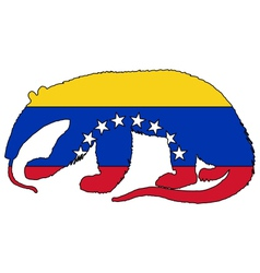 Anteater venezuela vector