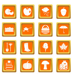 Autumn icons set orange vector