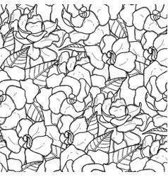 Graphic gardenia pattern vector