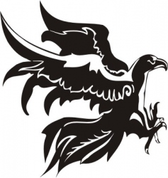eagle  predatory bird vector image