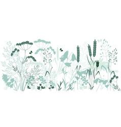 Herbal vector