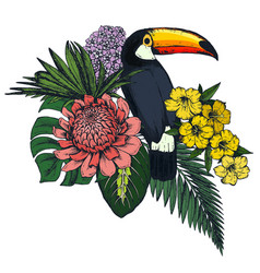 composition of tropical flowers and exotic vector image