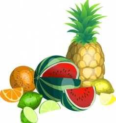 Fruit illustration vector