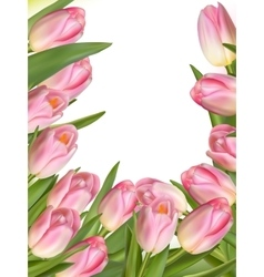 Tulip flowers forming an abstract border EPS 10 vector image vector image