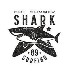 Graphic design for t shirt with the image of shark vector