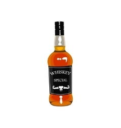 Whiskey Bottle Drawing Isolated On White vector image