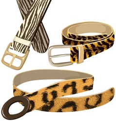 Belt with texture wild animal skins vector