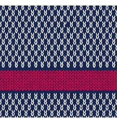 Color Knitted Pattern vector image