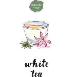 cup of tea with flower and petals tea vector image vector image