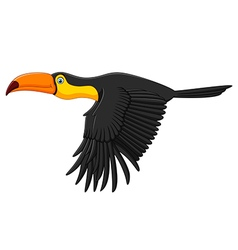 Cute toucan bird cartoon flying vector image vector image