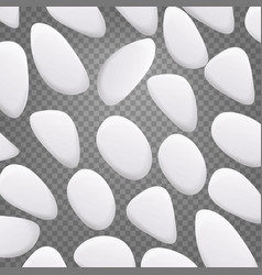 white pebble natural realistic 3d stones vector image