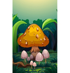 Mushrooms at the forest vector