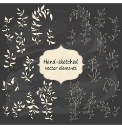 Hand sketched vintage floral elements vector