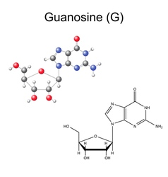 Chemical formula and model of guanosine vector