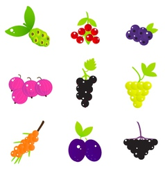 Summer fruit and berries set isolated on white vector
