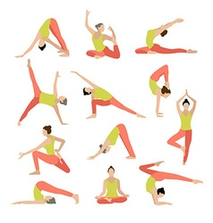Yoga yoga set women yoga vector