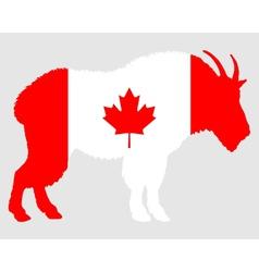 Mountain goat canada vector