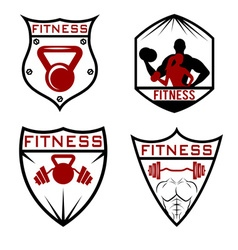 Set of fitness labels vector