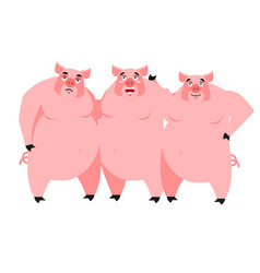 Three pig for fairy tale piglets on white vector