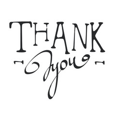 thank you calligraphy isolated vector image