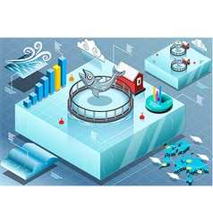 Isometric infographic of sea farmed fish vector