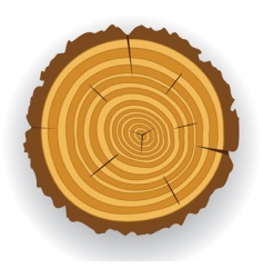 wooden log cut vector image vector image