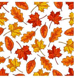 Autumn leaf seamless pattern background vector