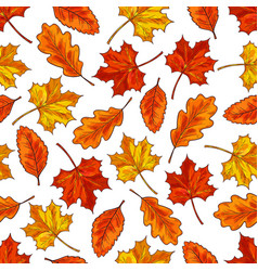 autumn leaf seamless pattern background vector image