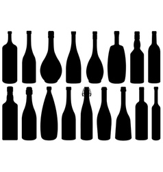 Set of different glass bottles vector image vector image