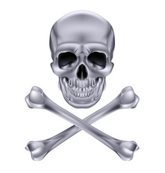 silver skull and crossbones on white background vector image