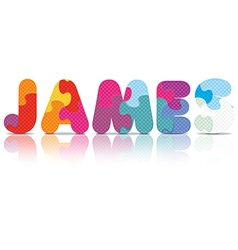 James written with alphabet puzzle vector