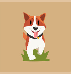 Adorable red-haired welsh corgi walking by green vector
