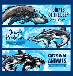 Big giant animals of deep ocaen banners set vector
