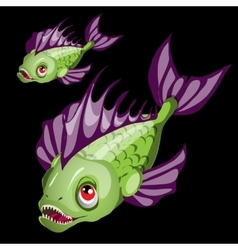 Predatory toothy green fish with purple fins vector image vector image
