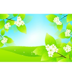 Green Landscape with Tree Branch vector image