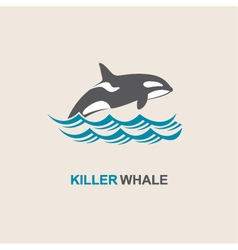 killer whale icon vector image vector image